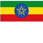 100% Arabica aus Äthiopien
